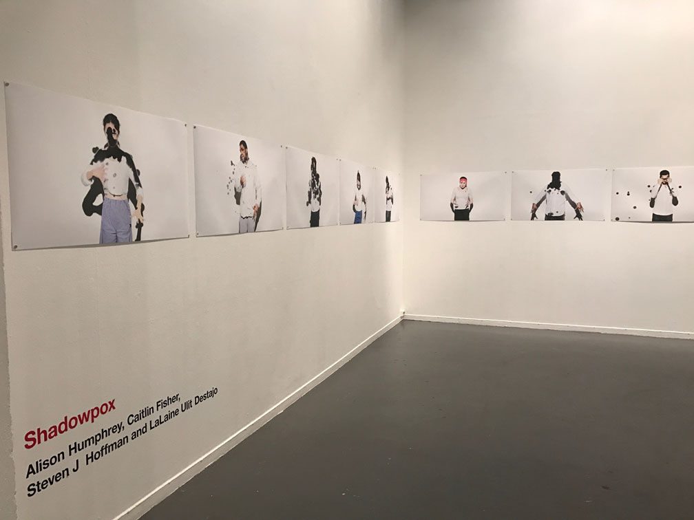 Shadowpox Exhibit Image