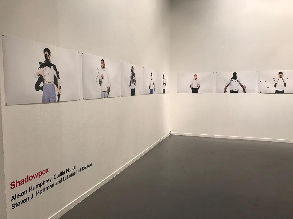 Image de l'exposition Shadowpox