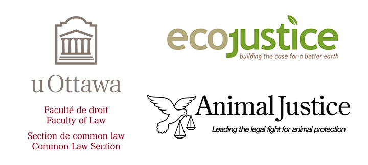 Ecojustice, Animal Justice and Faculty of Law logos