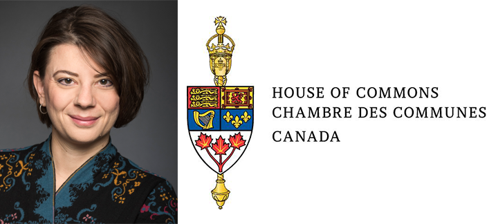 Professor Pavlovic and the House of Commons logo